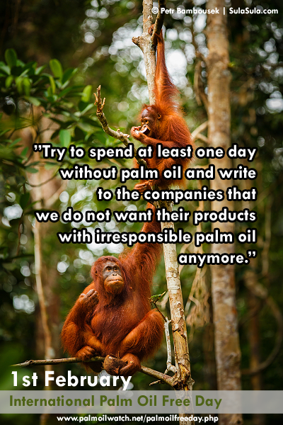 1st February International Palm Oil Free Day